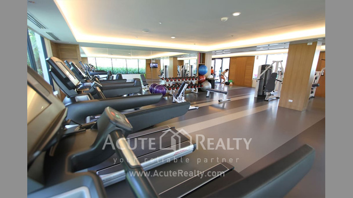 Condominium  for sale & for rent Amari Residences Hua Hin Hua Hin image14