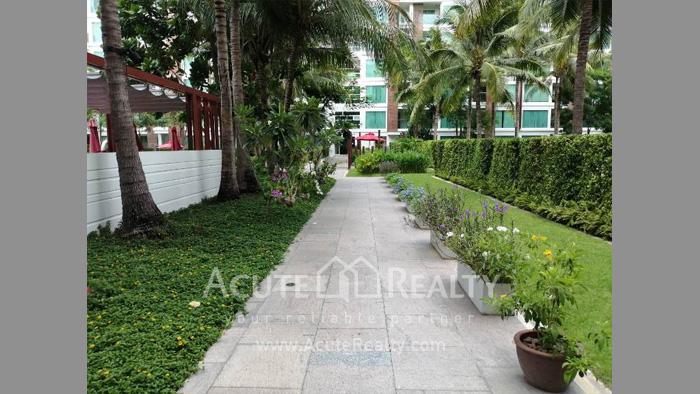 Condominium  for sale & for rent Amari Residences Hua Hin Hua Hin. image20