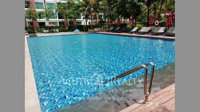 Condominium  for sale & for rent Amari Residences Hua Hin Hua Hin. image21
