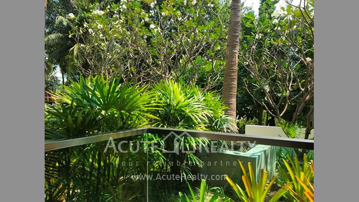 Condominium  for sale & for rent Amari Residences Hua Hin Hua Hin. image4