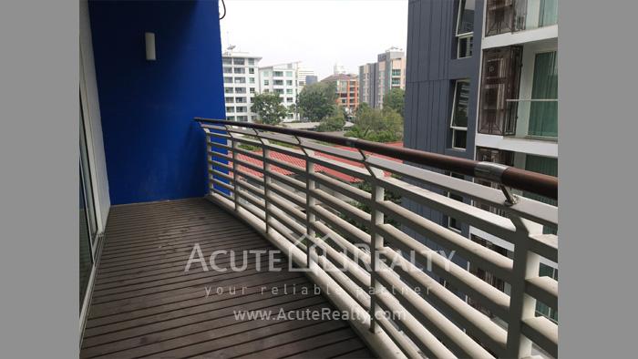 Condominium  for sale & for rent Avenue 61 Sukhumvit 61 image13