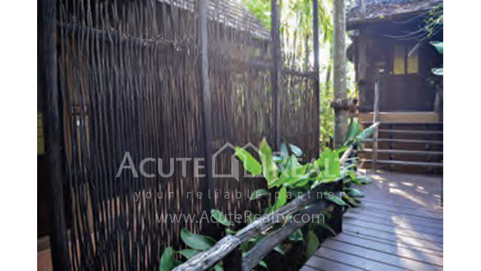 Resort  for sale Koh Chang, Trad, Thailand image16