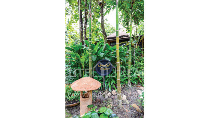 Resort  for sale Koh Chang, Trad, Thailand image38