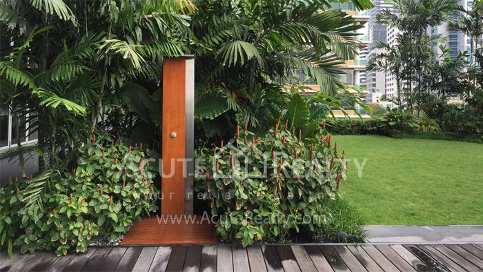Condominium  for sale & for rent 185 Rajadamri Rajdamri image17