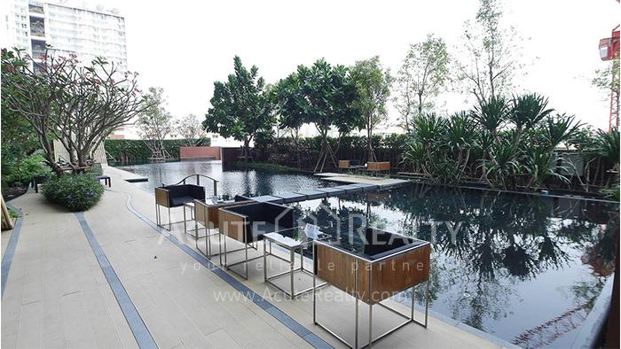 Condominium  for sale WYNE Sukhumvit Sukhumvit 77 image11