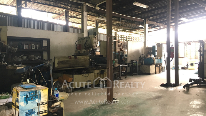 Shophouse, Land, Warehouse  for sale Sukhumvit 95/1 image5