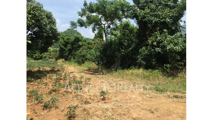 Land  for sale Kaoyai  image2