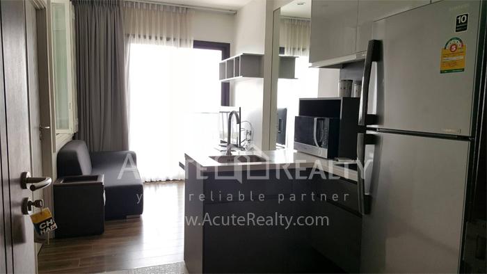 Condominium  for rent WYNE Sukhumvit Sukhumvit 77 image4