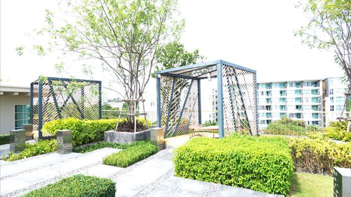 Condominium  for sale Autumn Hua Hin Hua Hin image14