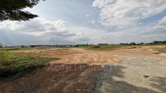 Land  for sale Bo Win, Si Racha District, Chon Buri  image5