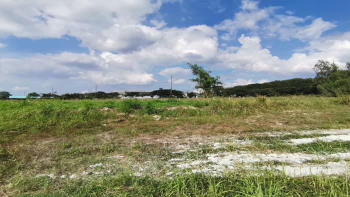 Land  for sale Bo Win, Si Racha District, Chon Buri  image7