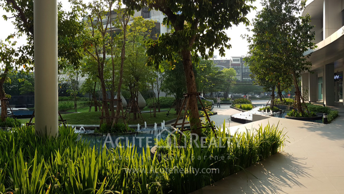 Condominium  for sale Life @ Ratchada - Huai Khwang Ratchadapisek Road image5