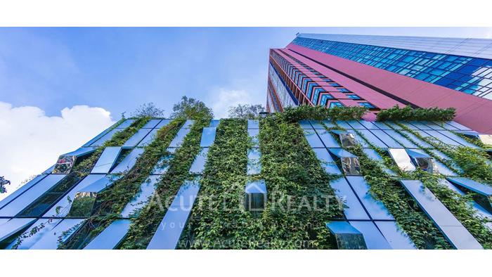 Condominium  for rent WYNE Sukhumvit สุขุมวิท 77 image0