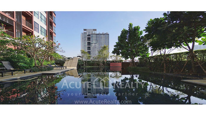 Condominium  for rent WYNE Sukhumvit สุขุมวิท 77 image1