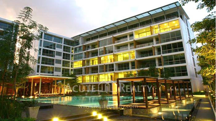 Condominium  for sale & for rent Ficus Lane Prakanong image10