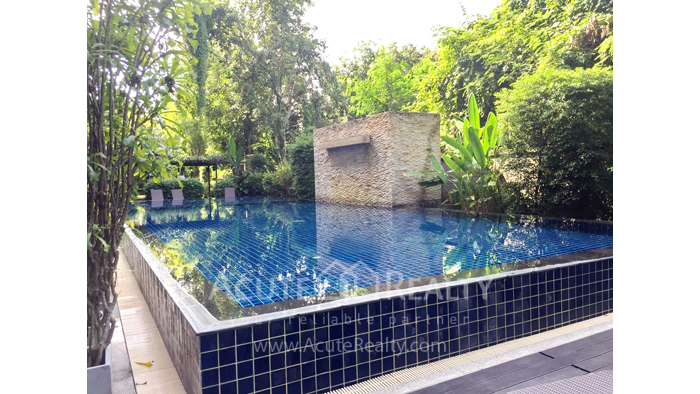 Condominium  for sale Mountain Front Condominium Klong Chonprathan rd., Suthep, Muang, Chiang Mai image13
