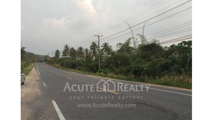 Land  for sale Moo 2, Hubbon Rd., Soi Chaikhao, T.Khaokhansong, Sriracha, Chonburi.   image3