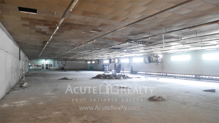 Factory, Warehouse  for rent Suksawat image10