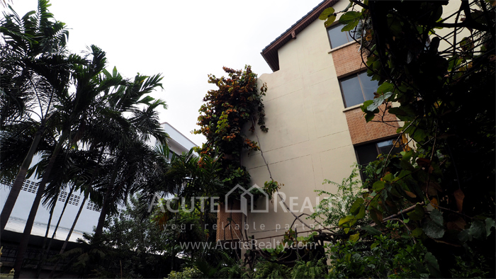 House, Home Office  for sale & for rent Sukhumvit 64 image14