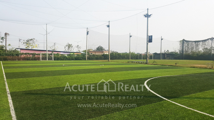Land, Factory, Warehouse  for sale Ratchburi image13