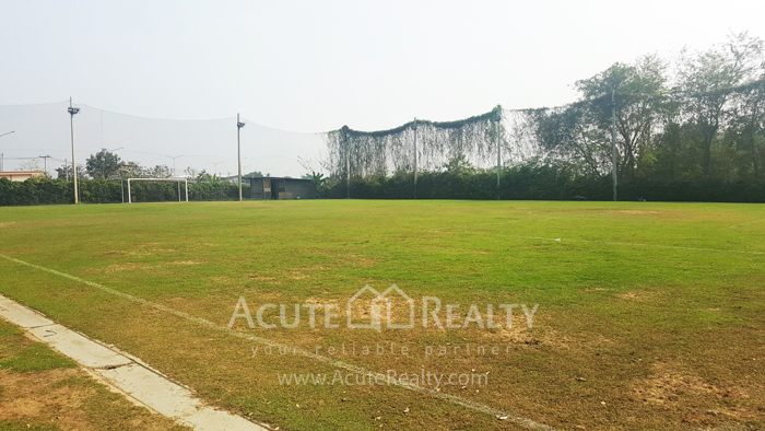 Land, Factory, Warehouse  for sale Ratchburi image14