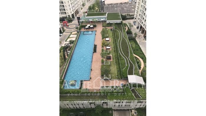 Condominium  for rent Supalai Wellington II Ratchadapisek image1