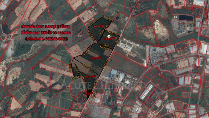土地  for sale Soi Wat Bo Win - Yang En. image6