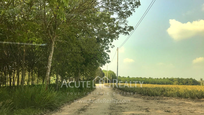 Land  for sale Tambon phana Nikhom Ban Khai Rayong image3