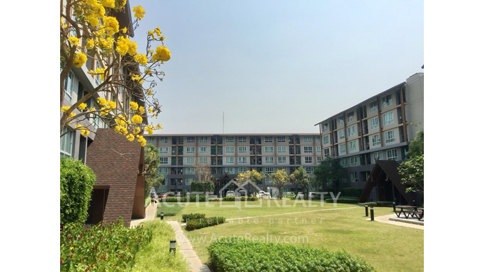 Condominium  for sale Dcondo Campus Resort Suthep, Muang, Chiang Mai image10