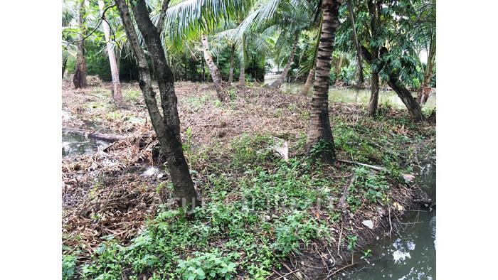 Land  for sale Bang kra choa, Phra Pra Daeng. image1
