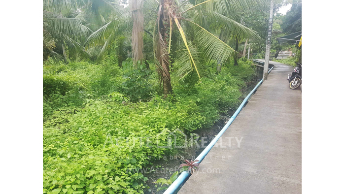 Land  for sale Bang kra choa, Phra Pra Daeng. image5