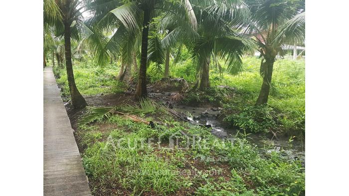 Land  for sale Bang kra choa, Phra Pra Daeng. image6