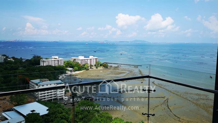Condominium  for rent The Zea  Sriracha  Chonburi. image0