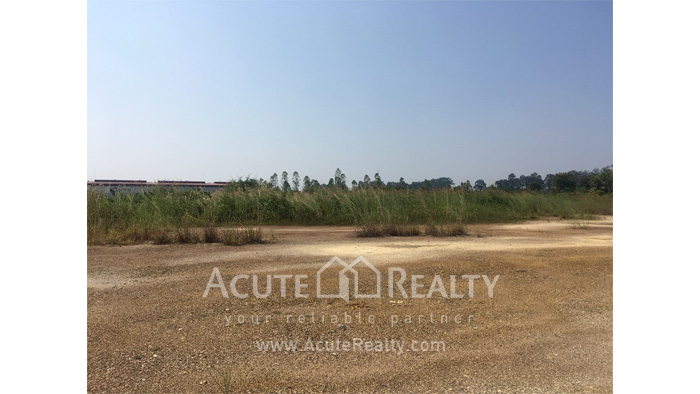 Land  for rent Saraphi image3