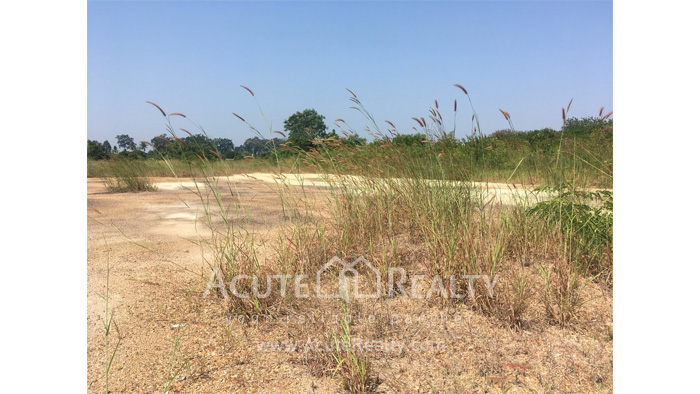 Land  for rent Saraphi image5