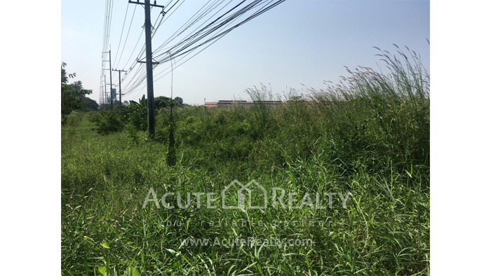 Land  for rent Saraphi image7