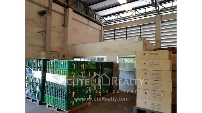 Land, Factory  for sale Nikhom Phatthana Rayong image15