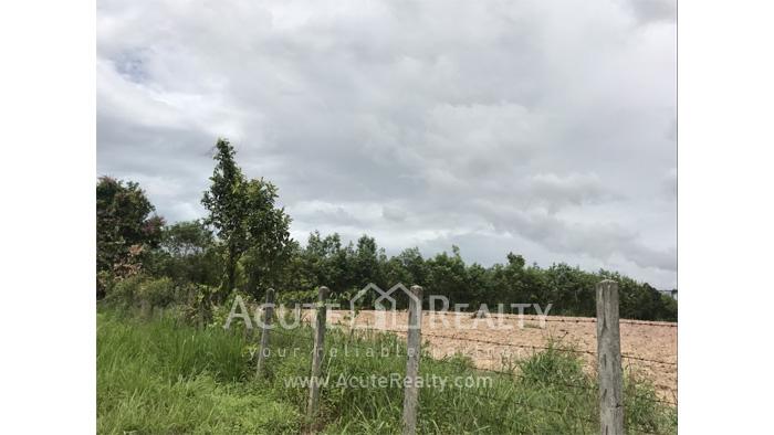Land, Factory  for sale Nikhom Phatthana Rayong image16