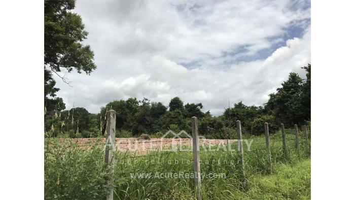 Land, Factory  for sale Nikhom Phatthana Rayong image18