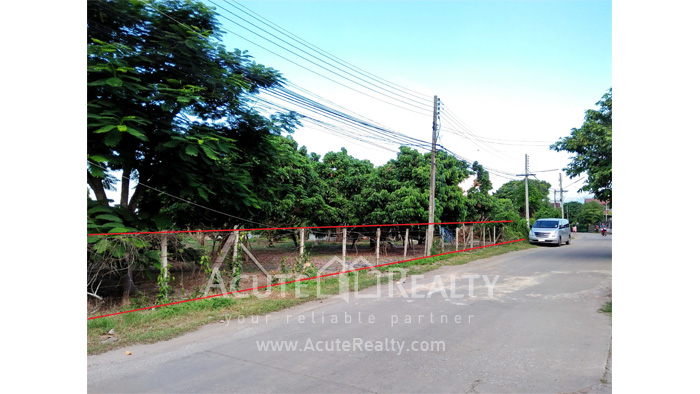 Land  for sale Chiang Mai-Hod Road image0