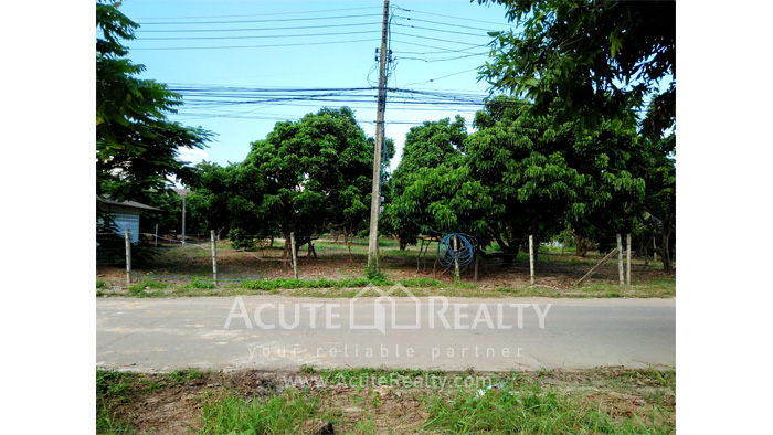 Land  for sale Chiang Mai-Hod Road image2