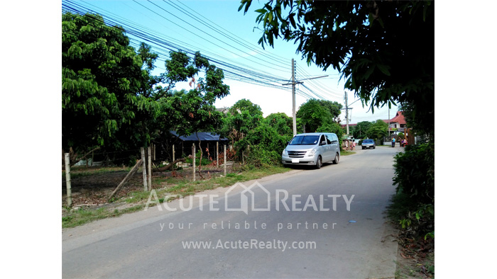 Land  for sale Chiang Mai-Hod Road image3