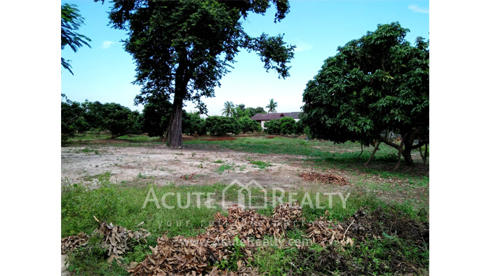 Land  for sale Chiang Mai-Hod Road image4