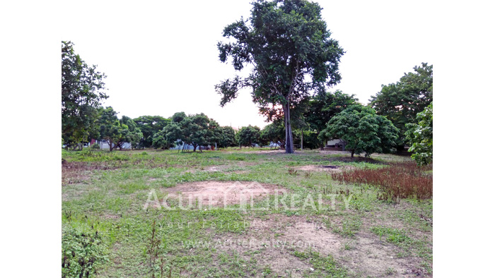 Land  for sale Chiang Mai-Hod Road image11