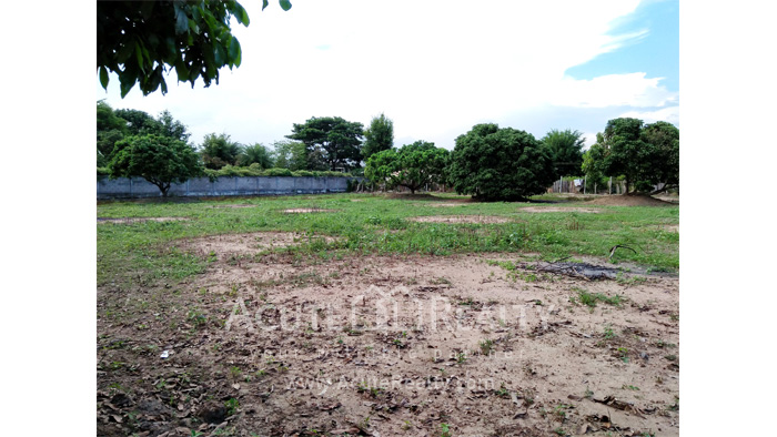 Land  for sale Chiang Mai-Hod Road image14