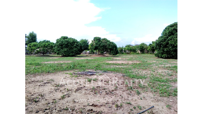 Land  for sale Chiang Mai-Hod Road image18