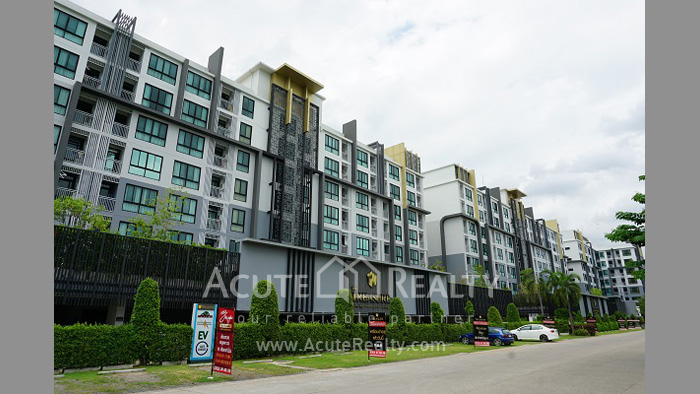 Condominium  for rent The Treasure By My Hip Chiangmai Business Park image0