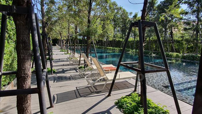 Condominium  for sale & for rent Na Jomtien Pattaya, Chonburi image9