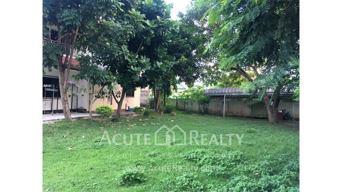 Land  for sale Pa Tan image5