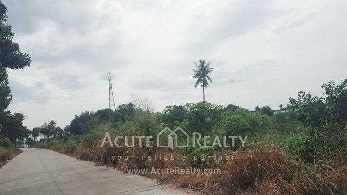 Land  for sale Sriracha - Nong Kho 13 Rd. image2
